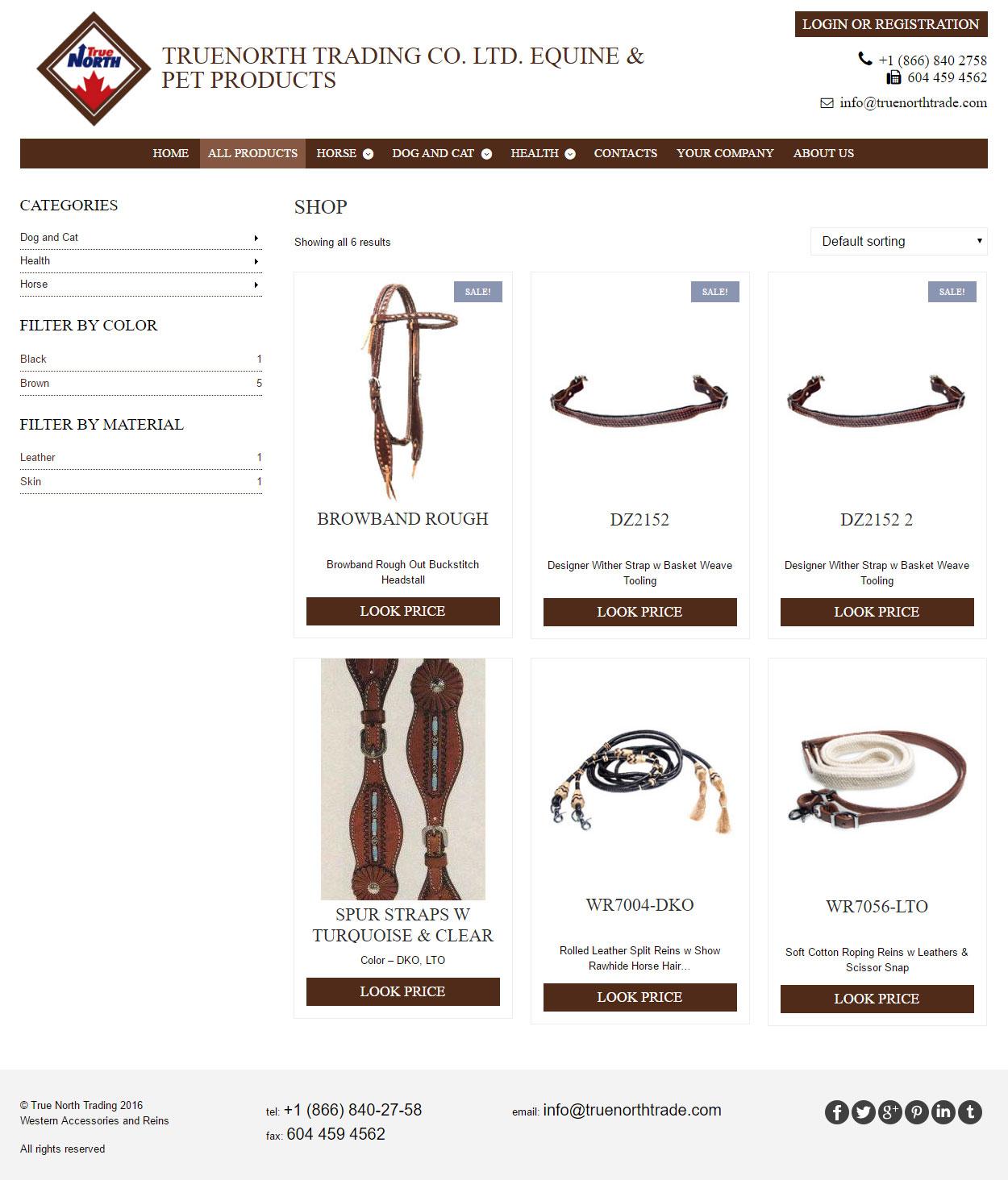 TrueNorth: дизайн сайта